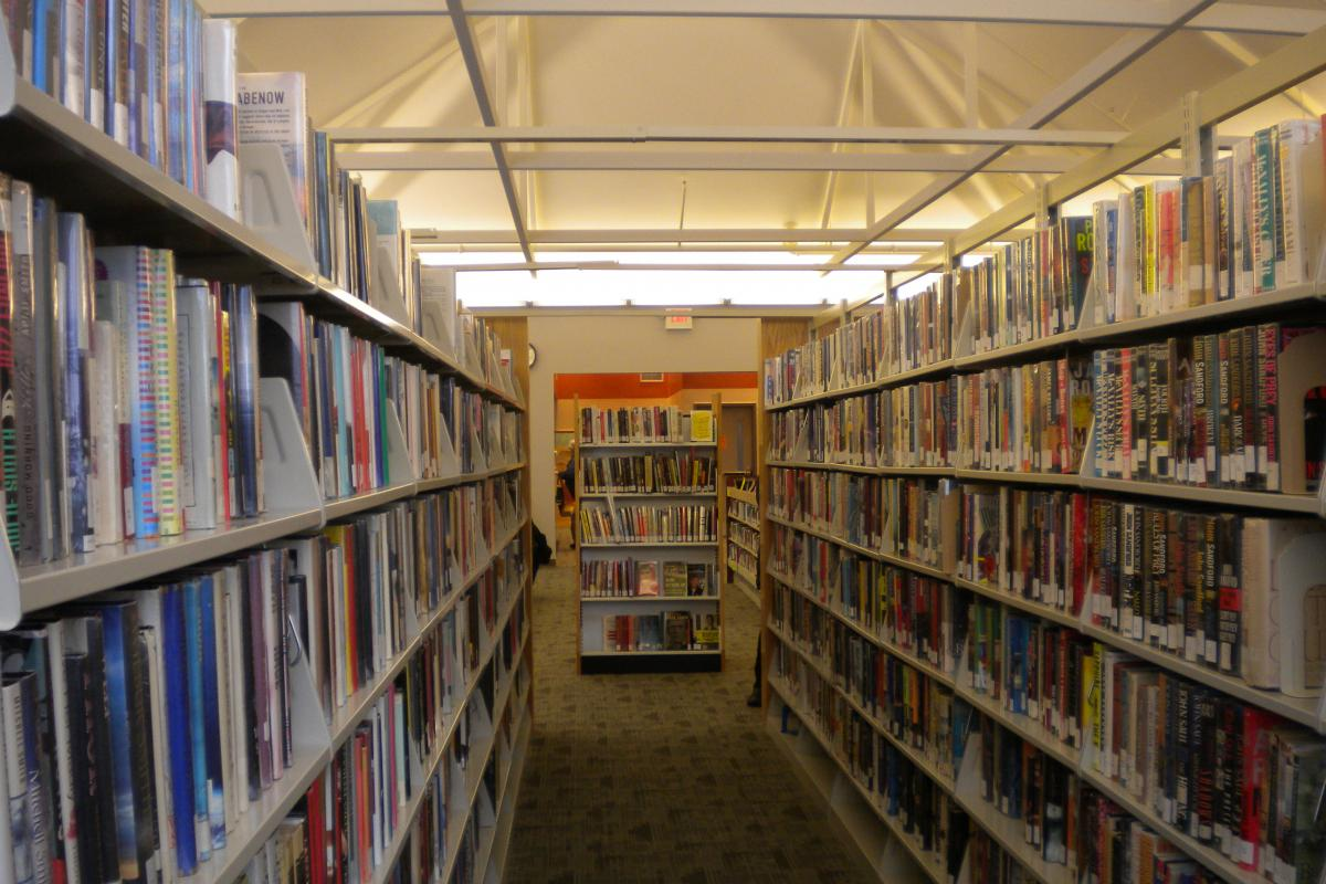 Adult reading section